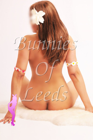 Massage Bunnies Of Leeds escort